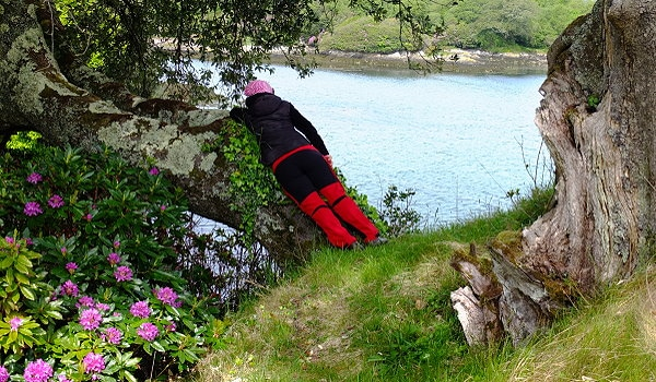 Irland Kräuterwandern Dunboy Castle