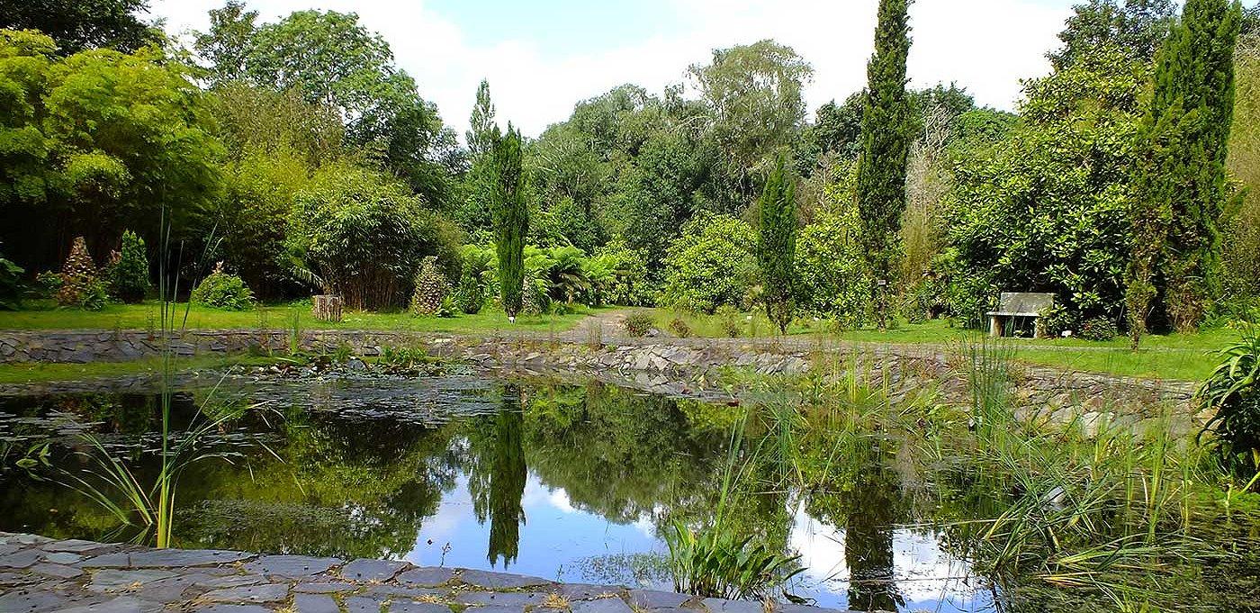 Irland Gartenreisen Bamboo Park