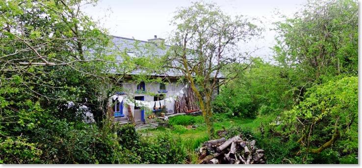 Irland Gartenreisen private Heilpflanzengärten