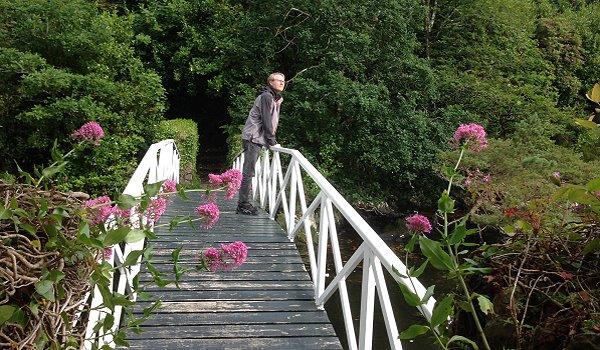 Irland Kräuterwandern Bamboo Park