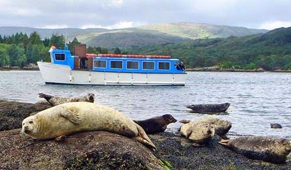 Irland Gartenreisen Kräuterwandern Robben Garinish Island