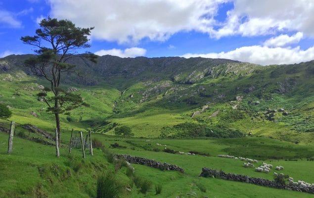 Natur Retreat Irlands Berge