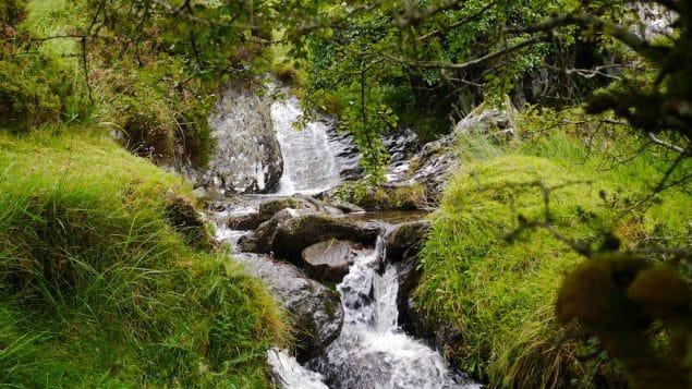 Bergbach Irland Natur Retreat