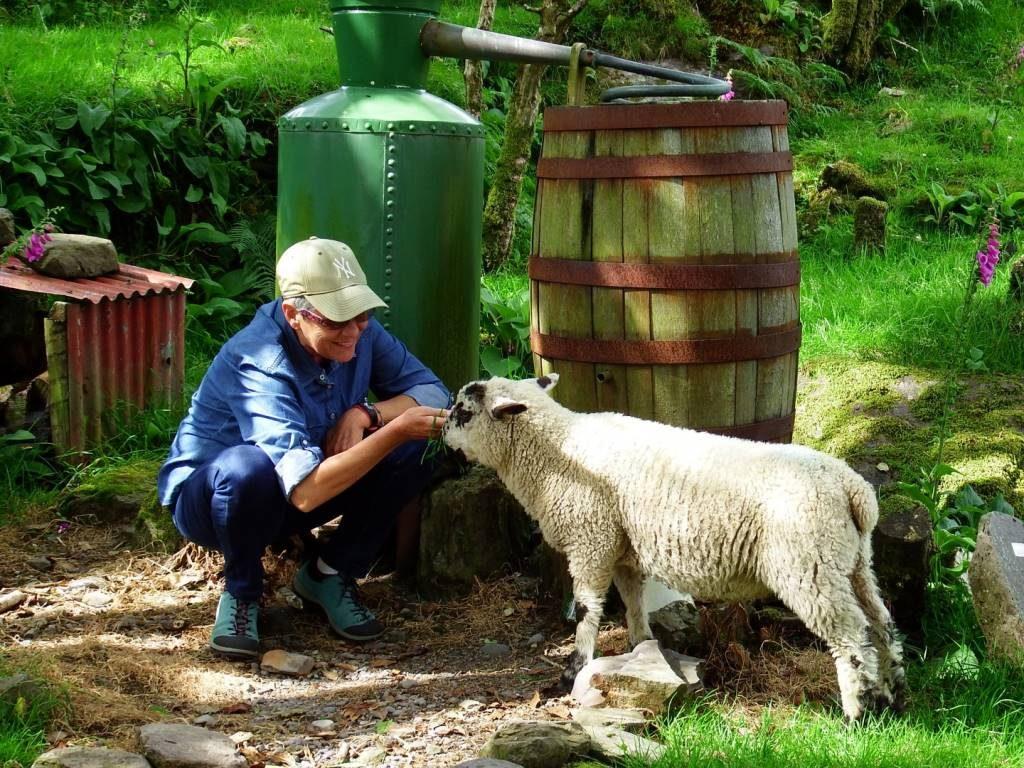 Gästereaktionen Wanderlust Irland Gartenreisen 2019